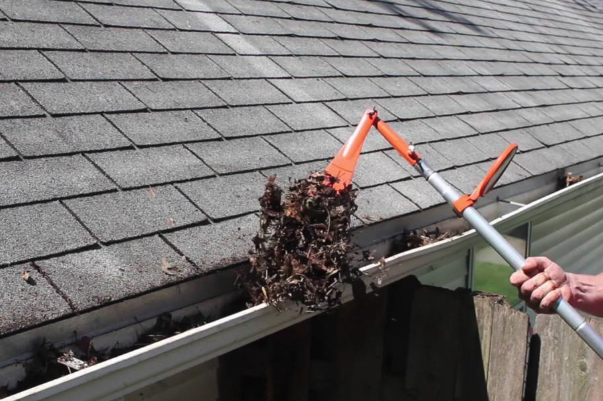 Clogged Gutters on roof