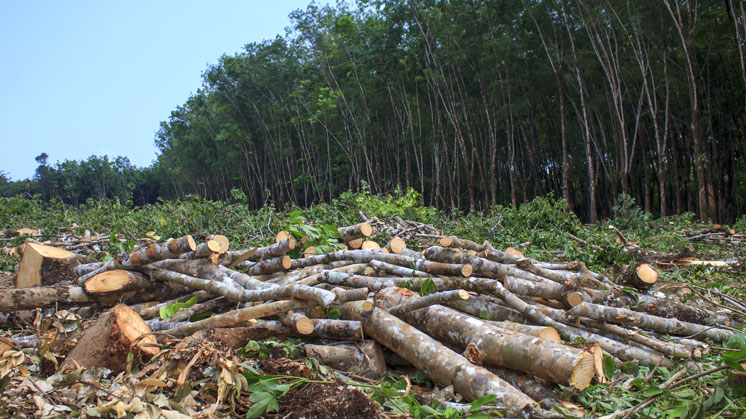 Reduction in use of natural resources