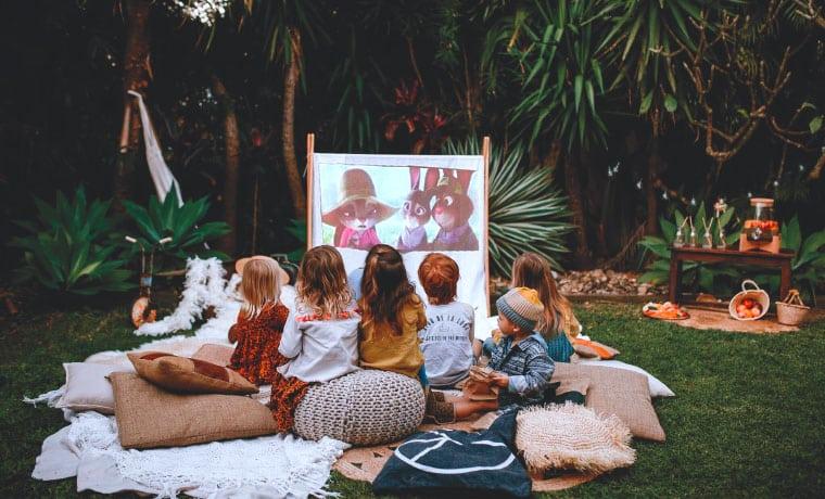 Screen in backyard